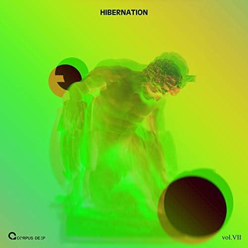 Alberto Sainz, Chris Hobbs, El Chem, Gidronique, Kiki-Music, Matthew Matheson, NeKKoN, Signal One, Methodub & Spanless
