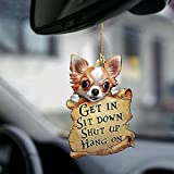 2021 New Dog Get in Sit Down Shut Up Hang on Car Hanging Ornament - 1/4Pcs Cute Pug Two Sided Ornament with a Treasure Map Gift for Car Ornament (D)