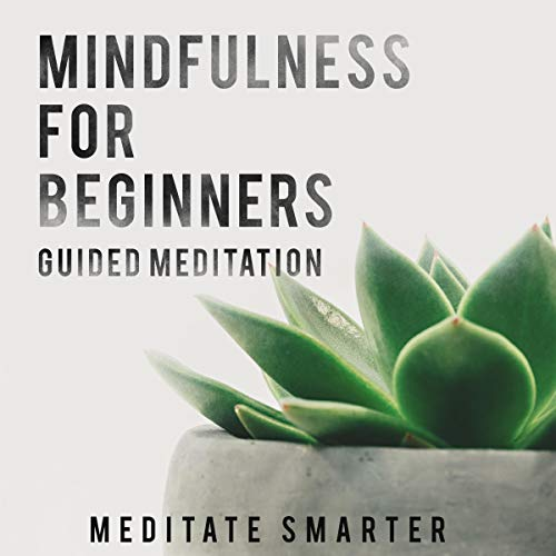 Mindfulness for Beginners: Guided Meditation for Sleep, Anxiety and Self Healing audiobook cover art