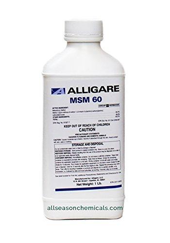Alligare MSM 60 DF (8 Pack x 16 oz)