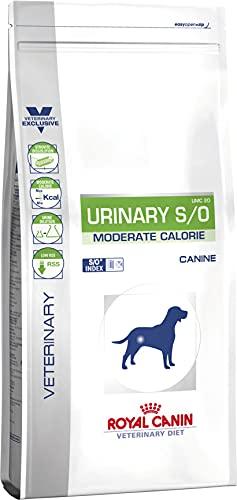 ROYAL CANIN Dog Food Urinary MC - 12 kg