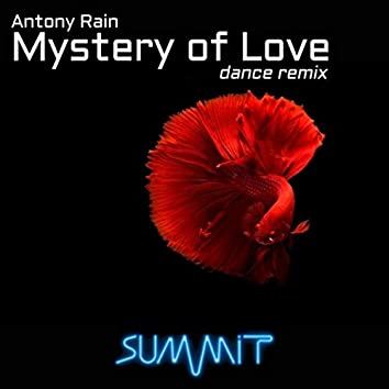 Mystery of Love (Dance Remix)