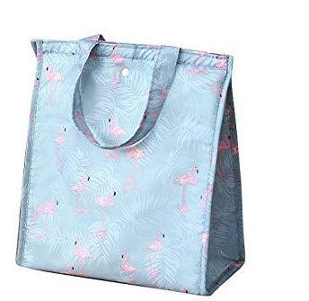 Bolsa térmica para el almuerzo, bolsa de almuerzo con aislamiento, bolsa de almuerzo portátil, reutilizable, de tela Oxford, bolsa de picnic impermeable, bolsa de viaje para picnic, azul claro, rectángulo