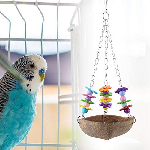 Jaula de pájaros, juguete columpio, coco, concha, acrílico, caja fuerte de metal, para