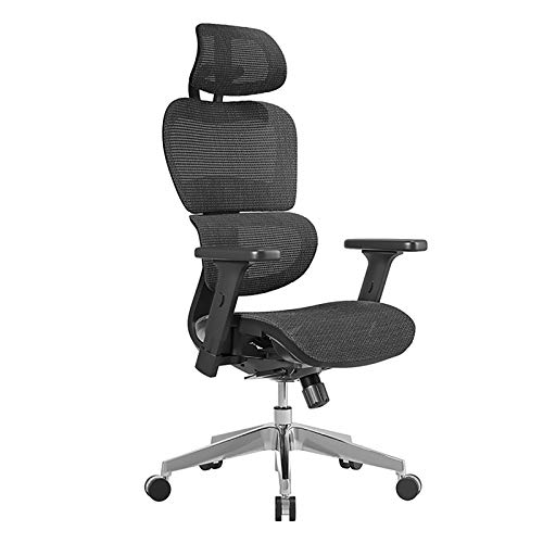 XINGLEI Office Chair, Ergonomic Heavy Duty Mesh Chair with Adjustable Headrest, 3D/4D Armrest and Lumbar Support, Tilt Function and Lock Position (Color : Black 1)