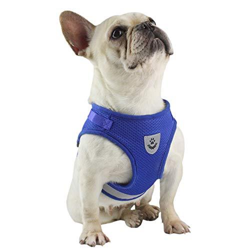 FeiLuo Hundegeschirr und Leinen Set für Hunde, Weich Mesh Gepolstert Geschirr für Welpen und Katzen, Reflektierende Verstellbare Atmungsaktive Brustgeschirr für Gehen, Laufen, Training (M, Blau)