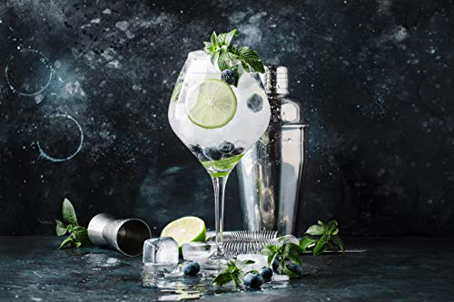 CocktailMeister Premium Cocktail Shaker Set - 4