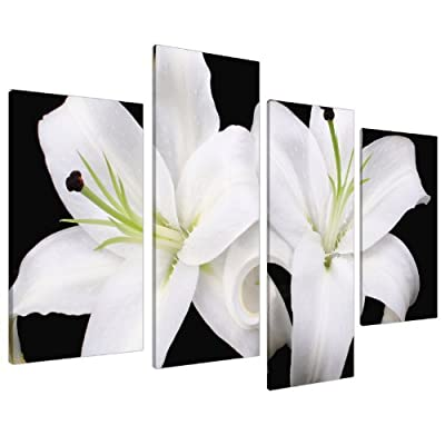 Large Floral Black White Orchids Canvas Wall Pictures