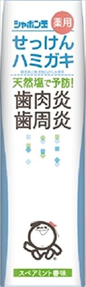 クローゼット定刻影のあるシャボン玉薬用せっけんハミガキ × 10個セット