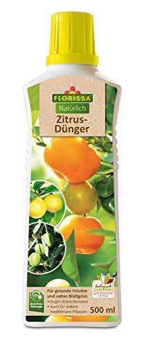 Florissa Zitrusdünger 500 ml