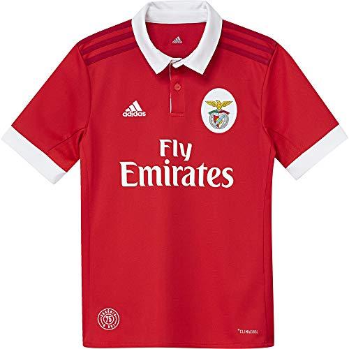 adidas SLB H JSY Y Camiseta 1ª Equipación Benfica 2017-2018, niños, Rojo (Ben.ro/Blanco), 152