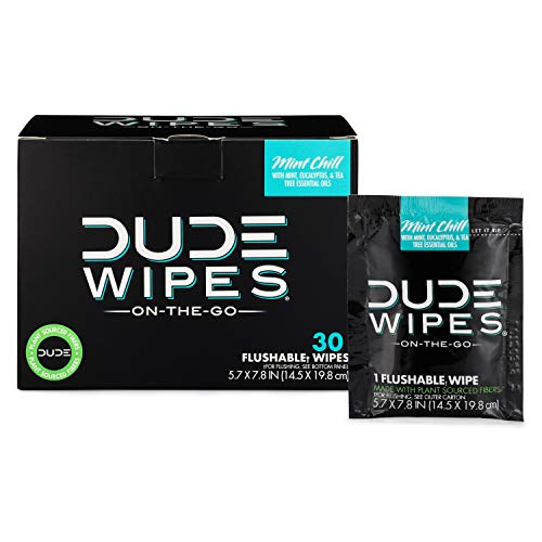 DUDE Wipes Flushable Wipes, Individually Wrapped Wet Wipes for Travel, Mint Chill Scent with Vitamin-E and Aloe, 30 on-the-go singles