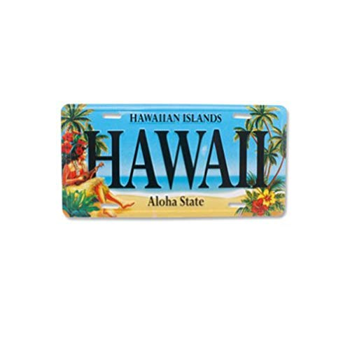 Hawaii Souvenir License Plate Vintage