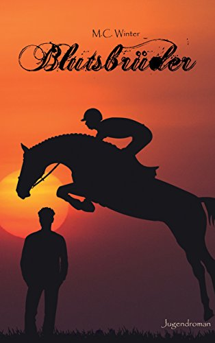 Blutsbrüder: Schattenspringen Band 2