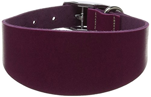 BBD Pet Products Whippet Leder Halsband, Boysenbeere
