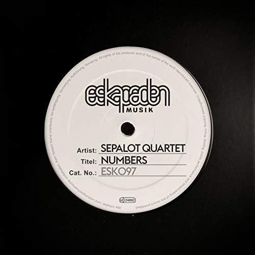 Sepalot feat. Angela Aux, Matthias Lindermayr & Fabian Füss