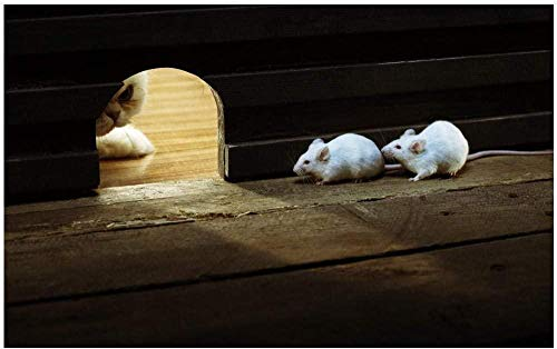 Houten puzzel 1500 stukjes Volwassen kinderen Puzzel Educatief spel speelgoed-Kat en muis Unieke creatieve vrijetijdsbesteding De beste keuze voor huisdecoraties en geschenken-87x57 cm