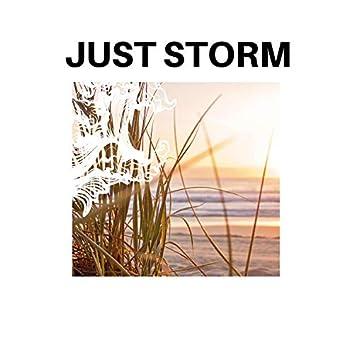 Just Storm