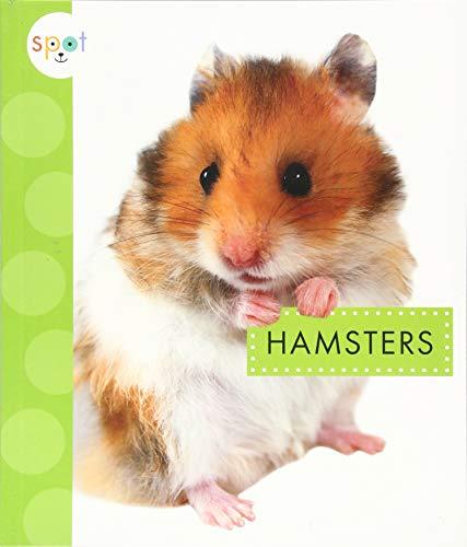 Hamsters (Spot Pets)