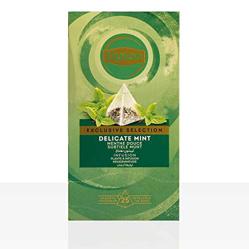 Lipton Delicate Mint Pfefferminze Kräutertee Pyramidbeutel 1er Pack (1 x 25 Teebeutel)