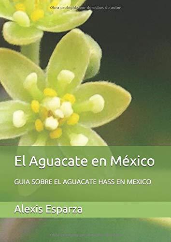 El Aguacate en México: GUIA SOBRE EL AGUACATE HASS EN