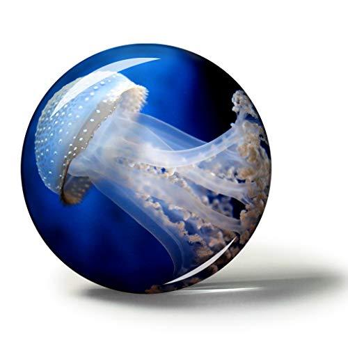 Hqiyaols Souvenir Italien Aquarium Von Genua Magnete Kühlschrankmagnete Andenken Sammlerstücke Reise Geschenk Kreis Kristall 1.9 inches