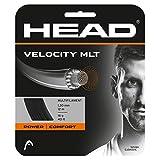 Head Velocity MLT Cordajes de Raquetas de Tenis, Adultos Unisex, Negro, 17
