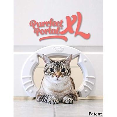 Amazoncom  Purrfect Portal XL Pet Cat Door