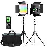 Switti LED Video Light, 2-Pack Dimmable Bi-Color Photography Lights, Studio Lighting Kit for YouTube Video Portrait Shooting Filmmaking, 600 LEDs /CRI95+/3200K-5600K Light Panel with Barndoor