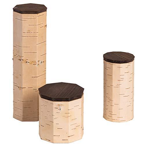 MOYA 3er Set Vorratsdose/Frischhaltedose aus natürlicher antibakterieller und feuchtigkeitsabweisender Birkenrinde - Aufbewahrungsbox mit Holz-Deckel - Spaghetti-Müsli-Tee-Kaffee-Zucker-Dose