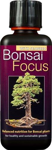 Bonsai Focus - einzigartiger konzentrierter Flüssigdünger 300 ml