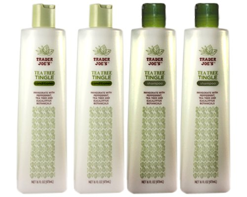 in budget affordable Trader Joe's Tea Tree Tingle Moisturizing Shampoo & Conditioner 4 Pack (2 Pieces Each) – Free
