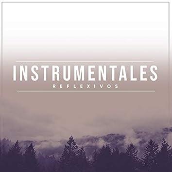 Instrumentales Reflexivas Relajantes
