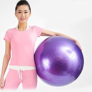 Purple Balle Ballon Pilate Gym 55 cm Exercise Sport Fitness Aerobic Yoga Body Fit Ball
