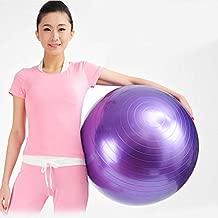 Purple Balle Ballon Pilate Gym 55 cm Exercise Sport Fitness Aerobic Yoga Body Fit Ball