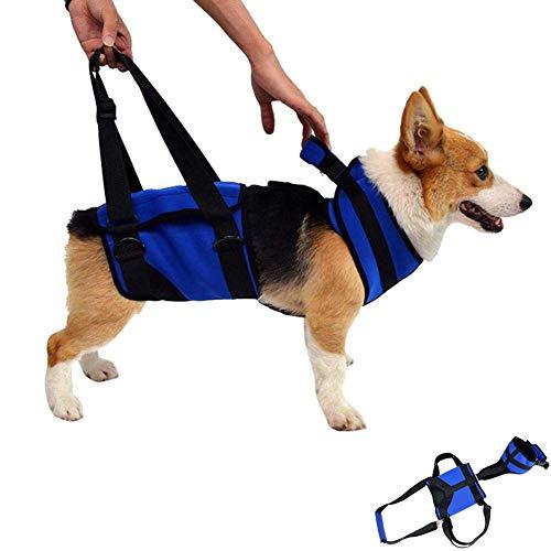 Hunde Sling Vet, Haustier Unterstützung für Behinderte Harness, Rehabilitation Ganzkörper Lifting Vest Aufzug Zurück Beine Hip Harness für Hilfe Haustiere Up Treppen, Best Alternative Rollstuhl