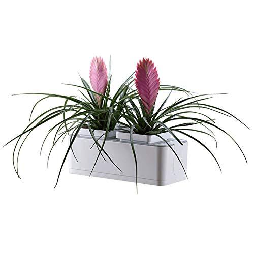 Jardinière à arrosage automatique Système de culture hydroponique Jardin d'herbes aromatiques Arrosage automatique Rappel de pénurie d'eau Sans sol 2 pots de plantes pour le bureau à domicile Herbes