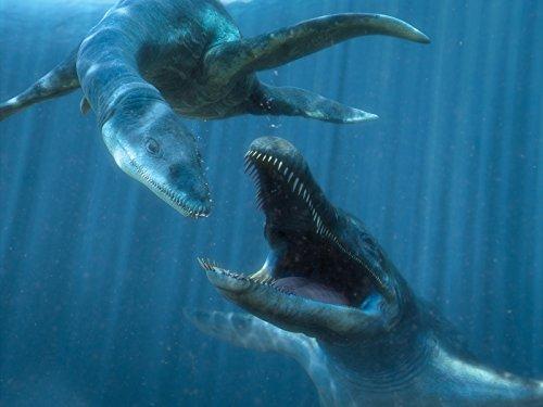 空飛ぶ恐竜たち