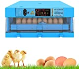 SYue Incubatrice per Uova 64 Digital Eggs Hatcher Tornitura Automatica per tratteggio Pollo Anatra Quaglie Piccioni Uso Domestico umidità Controllo Temperatura Umidificatore