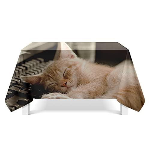XGguo Mantel, con relieves, Lavable, tamaño a Elegir, Arte Lindo del Animal doméstico del Gato