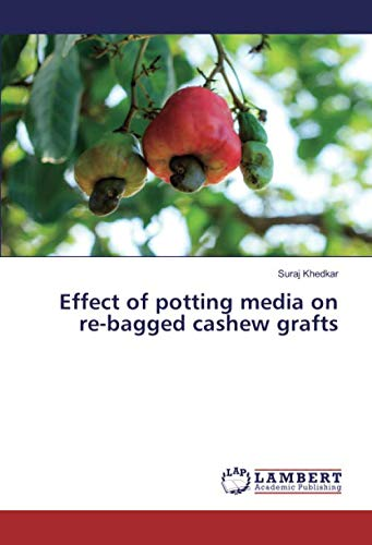 Effect of potting media on re-bagged cashew grafts