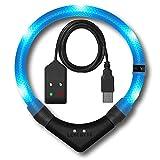 LEUCHTIE® Leuchthalsband Premium Easy Charge eisblau Größe 50 I LED Halsband für Hunde I USB aufladbar I konstante Leuchtkraft I wasserdicht I extrem hell