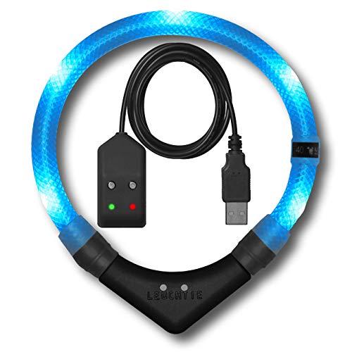 LEUCHTIE® Leuchthalsband Premium Easy Charge eisblau Größe 42,5 I LED Halsband für Hunde I USB aufladbar I konstante Leuchtkraft I wasserdicht I extrem hell