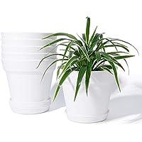 6-Pack Potey 6 Inch Plastic Nursery Pot