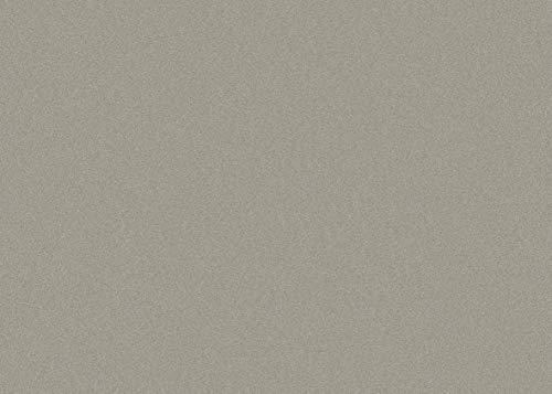 Rayher 7983100 Graupappe, 50x70 cm, 1000 g/m²