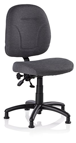 Reliable SewErgo Ergonomic Task Chair with Adjustable Back Sewing Chair, Cloth Covered Backrest,...