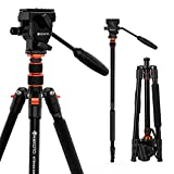 GEEKOTO 77 Inches Video Camera Tripod, Aluminum Tripod with 1/4' Screws Fluid Drag Pan Head,...
