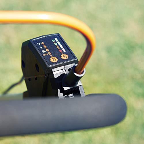 Lawnmaster 60V Performance