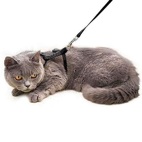 Cat Harness, Cat Lead Set of Kitten Nylon Lead Little Pet Strap Belt 49.2inch - Soft Adjustable - Best for Kitten Walking (Black)