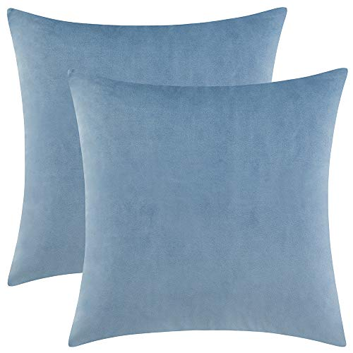 Rythome Set of 2 Comfortable Throw Pillow Cover for Bedding, Decorative Accent Cushion Sham Case for Couch Sofa, Soft Solid Velvet with Zipper Hidden - 20'x20', Sky Blue